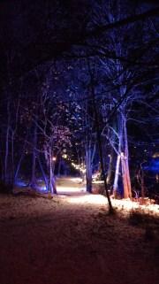 Lights in Alingsås, Sweden, 2016.