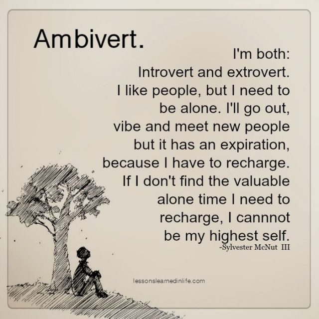 Image result for what is an ambivert quotes