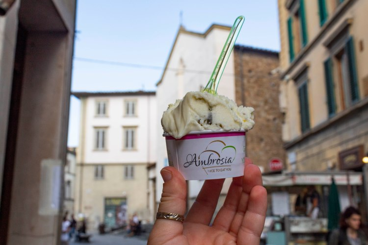 blackberry gelato in Florence Italy