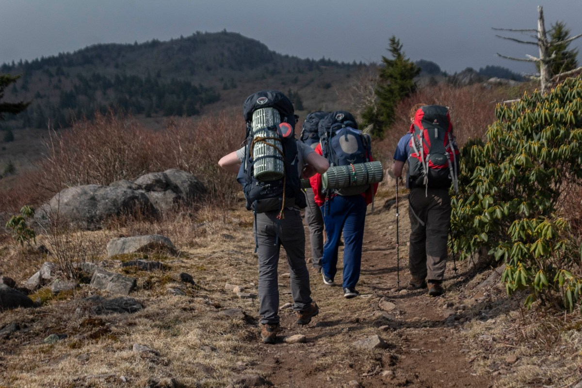 Backpacking Grayson Highland in Spring