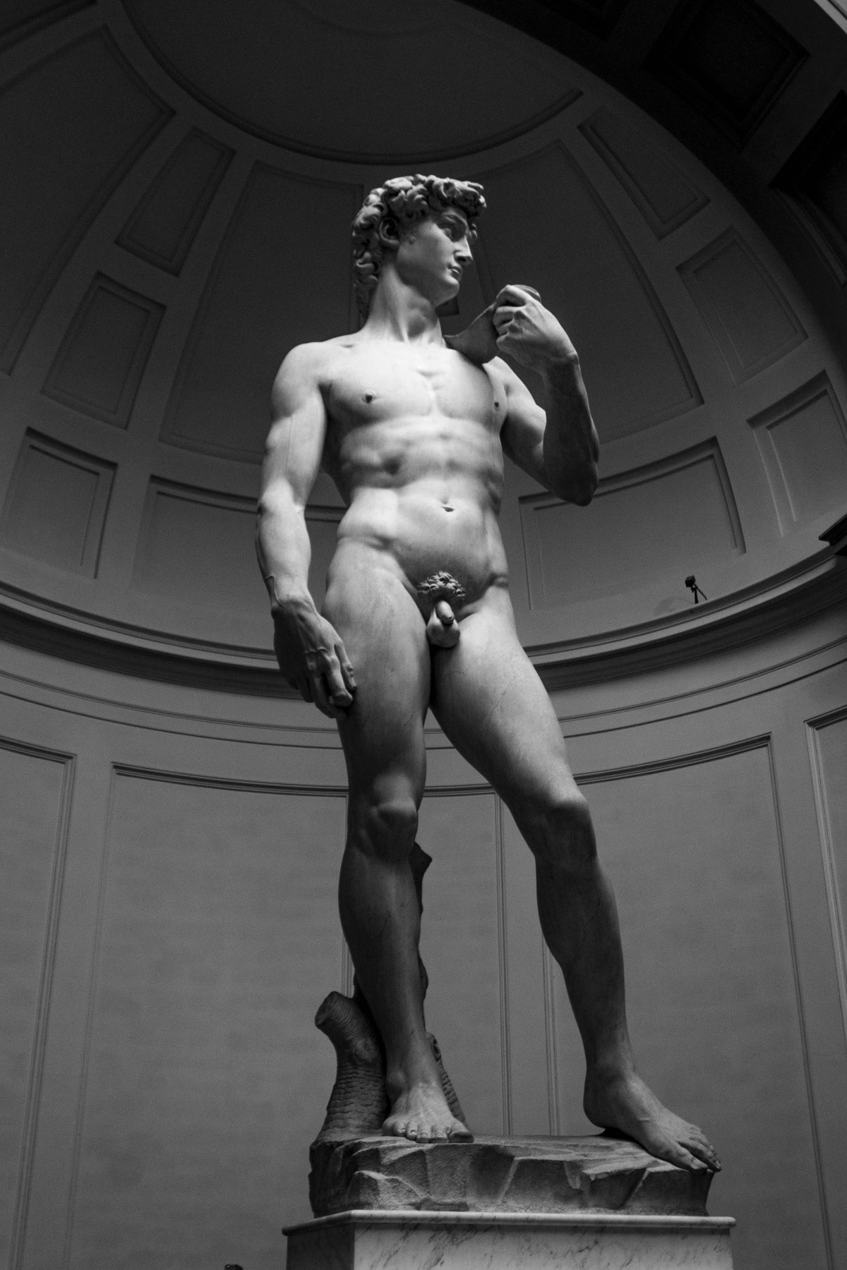 Michelangelo the David