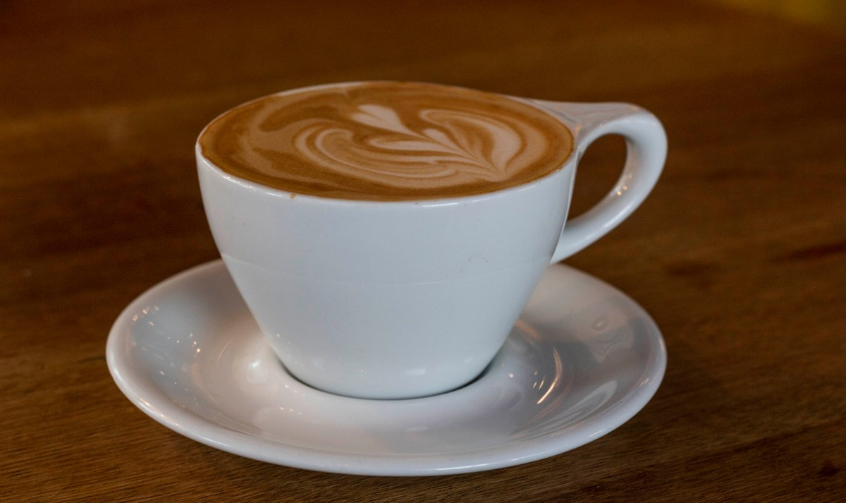 best coffee shops in Tampa, Florida