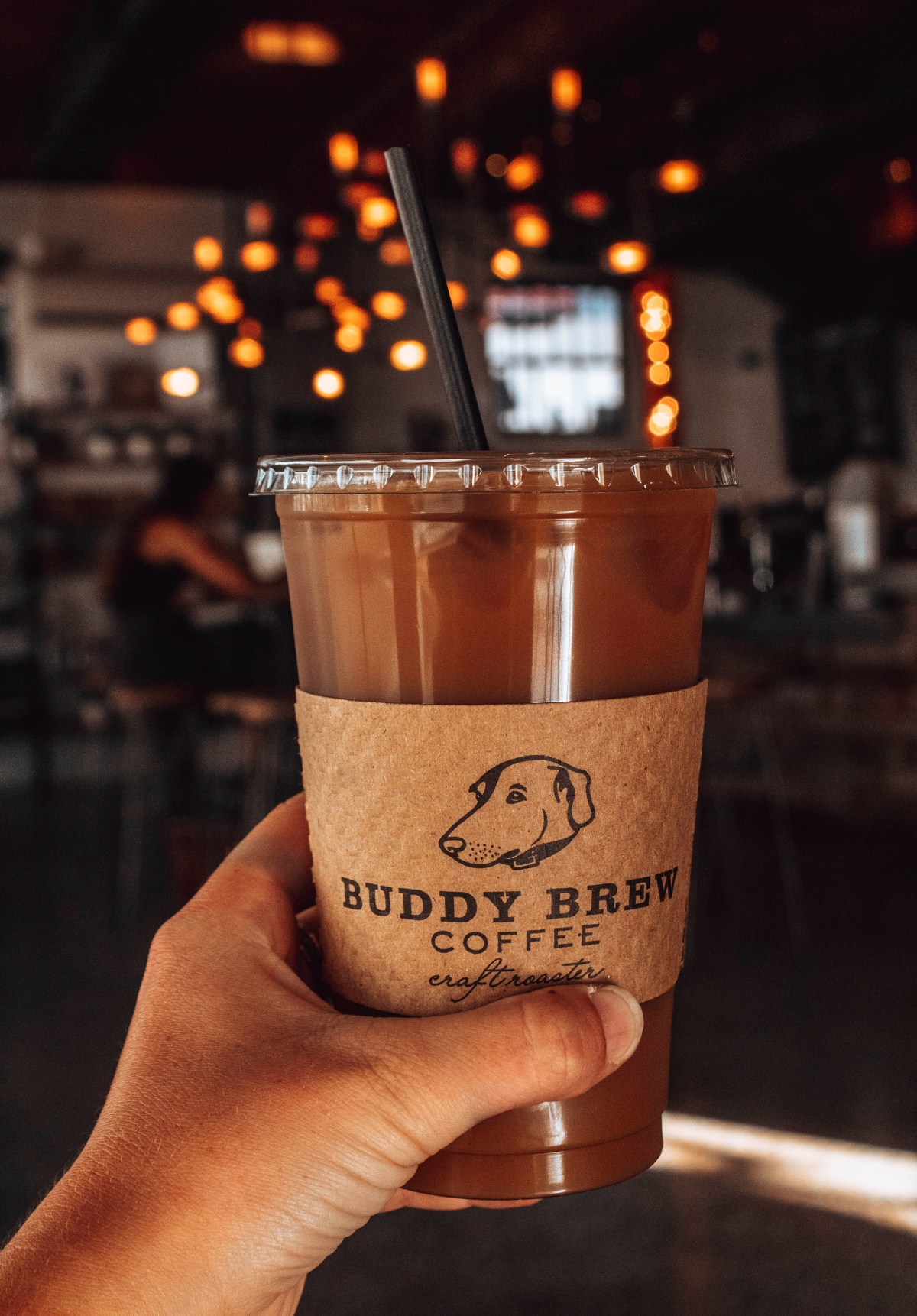 Buddy Brew Coffee- Best Coffee Shops in Tampa
