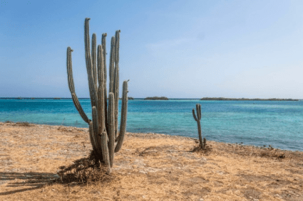Aruba- money saving tips for travel