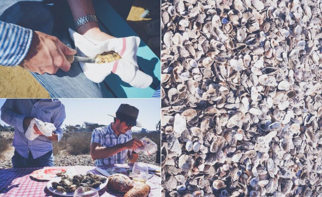 Jolly Oyster Ventura Beach