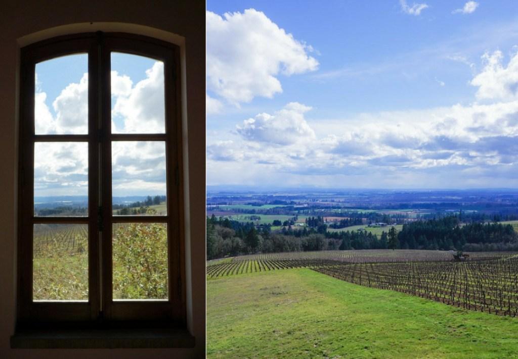 tasting room at drouhin winery