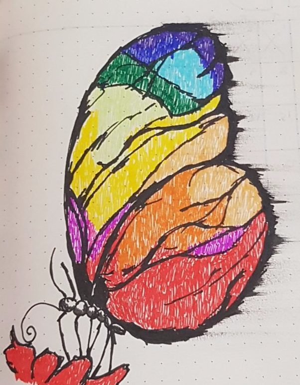 Butterfly_Colour