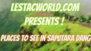 Read more about the article Places to see in Saputara (Dang District)