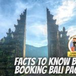 201 things to be considered before booking a Bali holiday package in 2021?