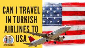 Read more about the article Can I travel from Serbia to USA on Turkish Airlines?