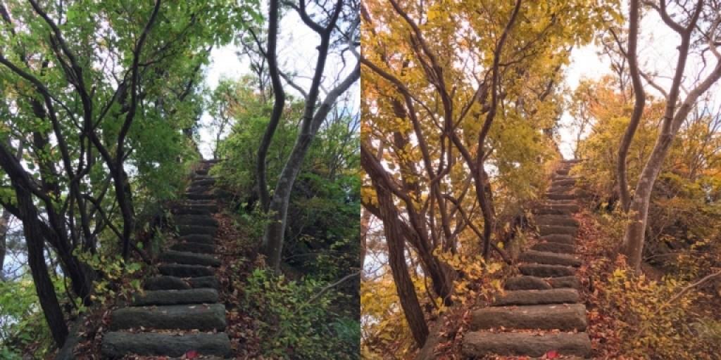 Before and After Lightroom Mobile edit