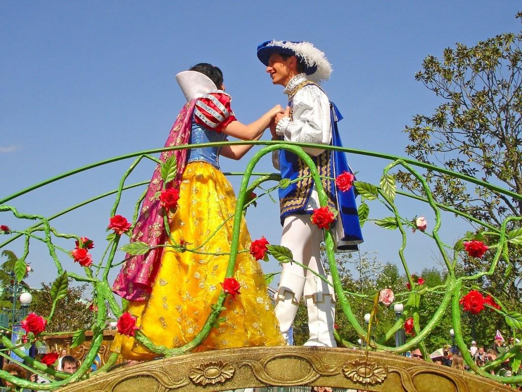 nettoyage robe mariage thème disney