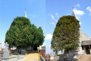 Comparatif avant/après