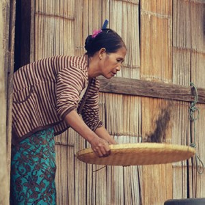 Thés de Thaïlande