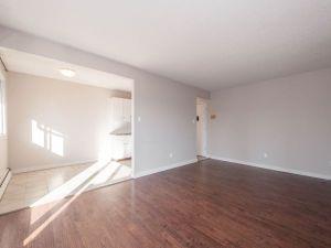 elmwood apartments living room