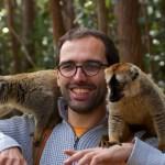 Baballe avec deux lémuriens