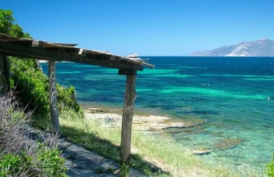 Corsica, Saleccia