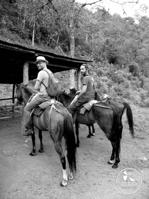 A cheval à Salento Colombie