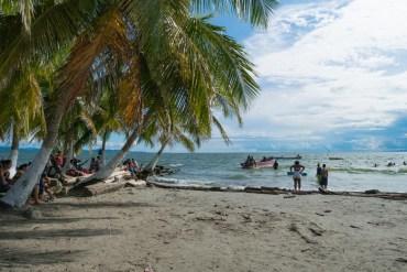 plage de necocli avec ses cocotiers en colombie