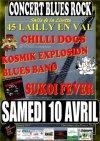 """10 avril 2010 Chillidogs, Kosmik Explosion Blues Band, Sukoi Fever à Lailly En Val """"Salle de la Lisette"""""""