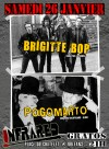 "26 janvier 2013 Brigitte Bop, Pogomarto à Orléans ""Infrared"""