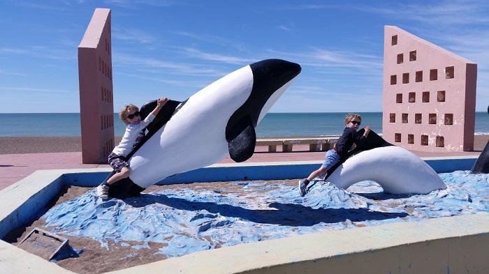 347-dauphins