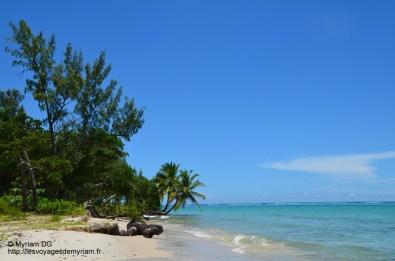 Ici pas de corail, rien que du sable dans le fond de l'océan et pas un poisson!