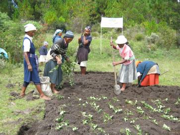 Les femmes agricultrices