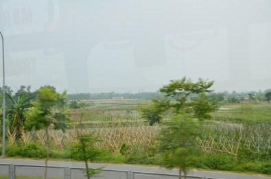 Si vous regardez bien on voit des sortes de petites maisons, qui ressemblent à des ruches. Ces sont des tombes! Au milieu des plantations de haricots et même dans la cours de la maison!