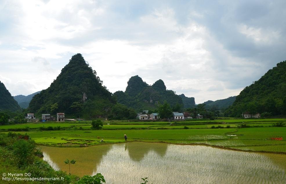 Conseils pour le Vietnam