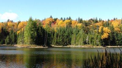 Parc du Mt Tremblant - Québec