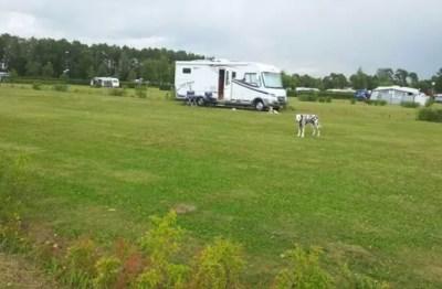Aire de camping-car de Bastad - Suède