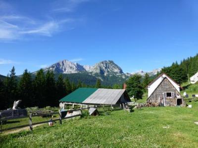 Camp Mlinsky Potok - Zabljak (Monténégro)