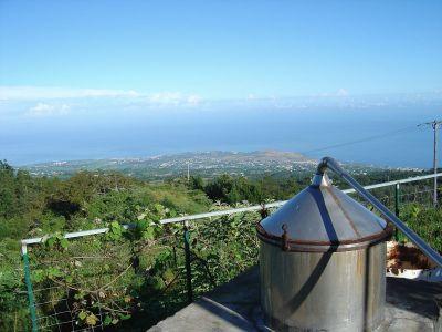 Une distillerie de La Petite-France - Réunion