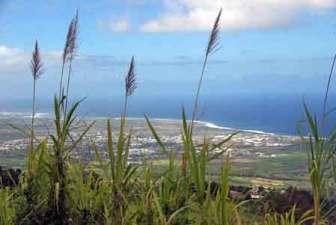 Vue sur le littoral depuis la route des Makes - Réunion
