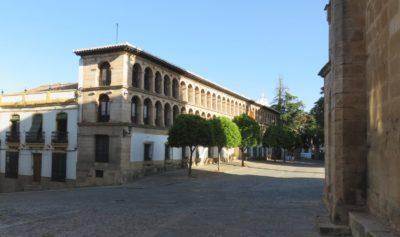 Colegiata Santa Maria de la Encarnacion la Major