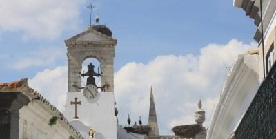 Cigognes sur le clocher