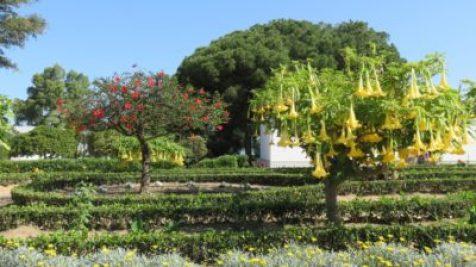 Les jardins du monastère de La Rabida