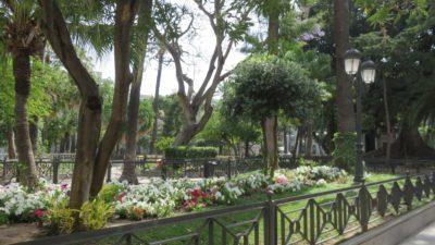 Dans le parc Genoves de Cadix