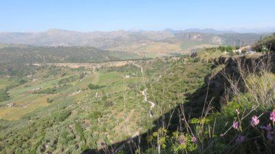 Vue sur la plaine de Ronda au petit matin