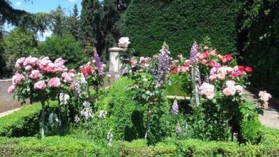Les fleurs des jardins de l'Alhambra