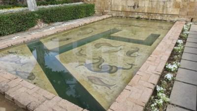 Les bassins de l'Alcazar des rois catholiques de Cordoue