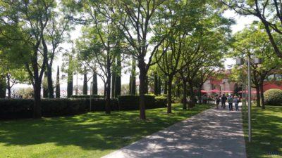 Dans les jardins de Sirmione