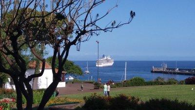 Vue sur le port depuis le parc Ste Catherine de Funchal - Madère