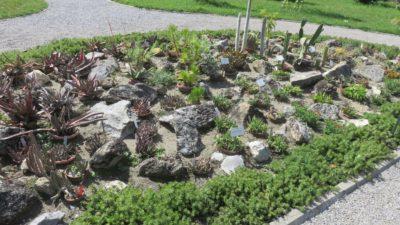 Au jardin botanique - Zagreb