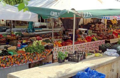 Petit marché de Trogir