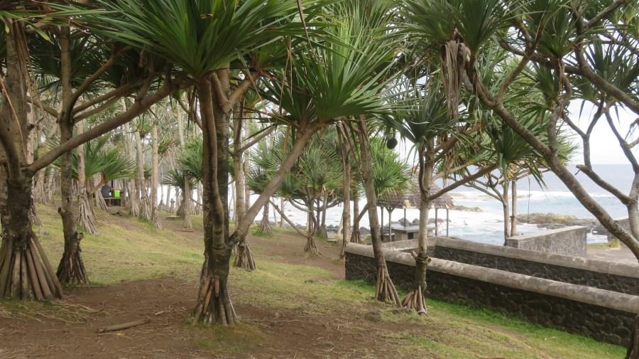 La piscine du puits des Anglais - Le Baril (Réunion)