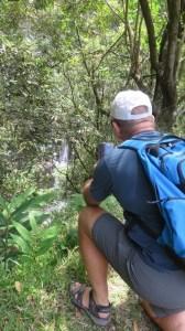 Vue sur la cascade de Grand Galet - Réunion