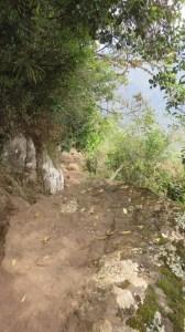 Sentier du Cap Noir - Dos d'Ane