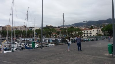 Le port de Funchal - Madère